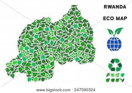 Ecology Rwanda Map Mosaic Of Herbal Leaves In Green Color Shades. Ecological Environment Vector Conc