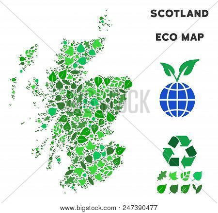 Ecology Scotland Map Collage Of Herbal Leaves In Green Color Hues. Ecological Environment Vector Con
