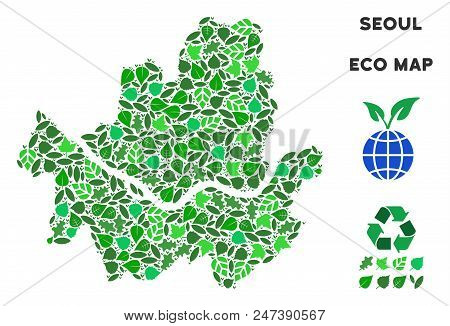 Ecology Seoul City Map Collage Of Floral Leaves In Green Color Tinges. Ecological Environment Vector