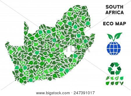 Ecology South African Republic Map Mosaic Of Herbal Leaves In Green Color Tints. Ecological Environm