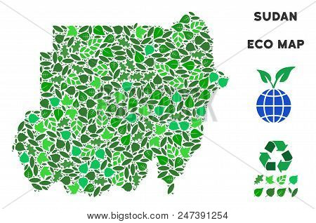 Ecology Sudan Map Mosaic Of Floral Leaves In Green Color Shades. Ecological Environment Vector Conce