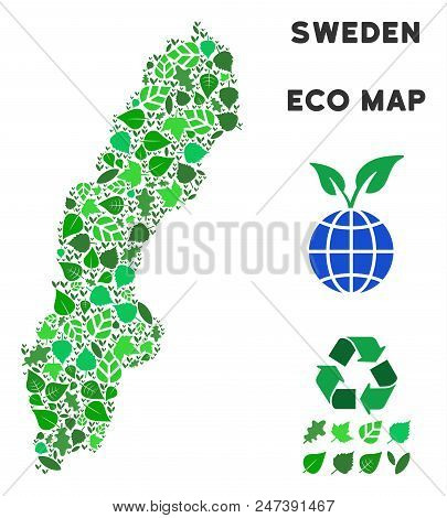Ecology Sweden Map Composition Of Floral Leaves In Green Color Tones. Ecological Environment Vector