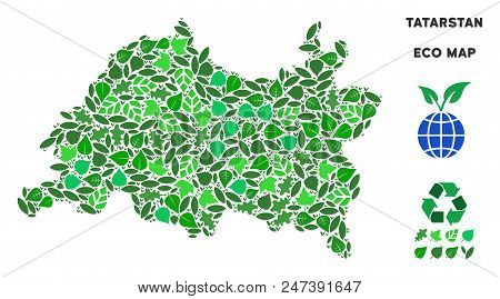 Ecology Tatarstan Map Mosaic Of Herbal Leaves In Green Color Tones. Ecological Environment Vector Te