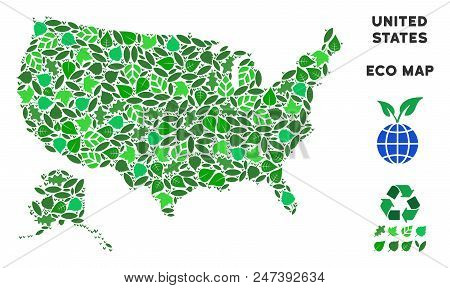 Ecology Usa With Alaska Map Mosaic Of Floral Leaves In Green Color Variations. Ecological Environmen