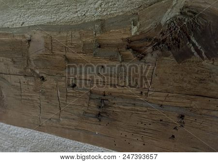 Close-up Of Hand Hewed Log With Knot And Ax Marks Set In Wall Of Log Cabin