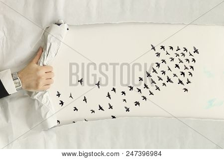 Male Hand Ripping A Paper Sheet Revealing Birds Forming An Arrow