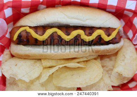 Hot Dog. Hot Dog in Bun with Yellow Mustard and Potato Chips on a Red and White Checker Paper Napkin. Isolated on white. Room for text. 4th of July and Summer Concepts