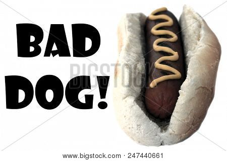 Hot Dog. Bad Dog Hot Dog Colorized in gray scale. Room for text. Isolated on white. Image and text easily moved or replaced as needed.