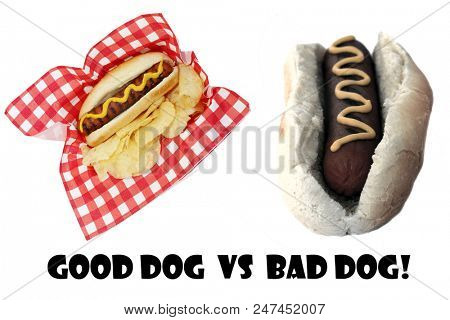 Hot Dog. Good Dog vs Bad Dog. Good and bad hot dogs isolated on white. room for text.
