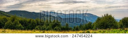 Panorama Of Carpathian Mountains In Summer. Beautiful Landscape With Forested Hills And Apetska Moun