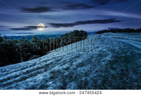 Mountain Road In To The Beech Forest At Night In Full Moon Light. Svydovets Mountain Ridge In The Di