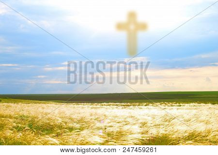 Divine Light From The Sky. The Way To God Through Forgiveness. Heaven On Earth. A Feather Grass In T