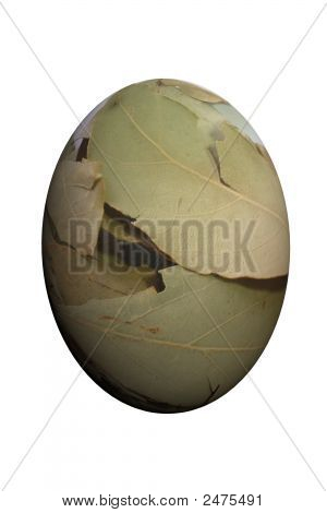 Render Of Isolated Egg With Laurel Leaf Material