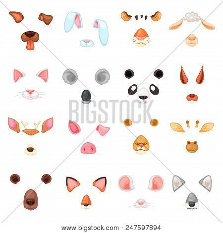 Animal Mask Vector Animalistic Masking Face Of Wild Characters Bear Wolf Rabbit And Cat Or Dog On Ma