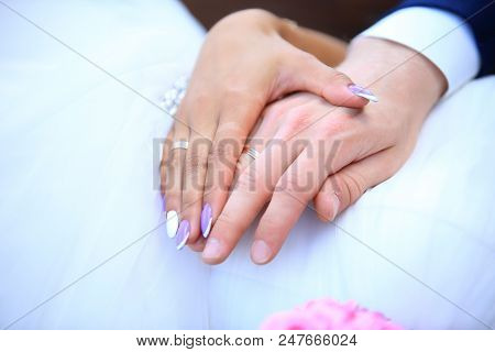 Close-up Of Hands Of A Married Couple With Wedding Rings
