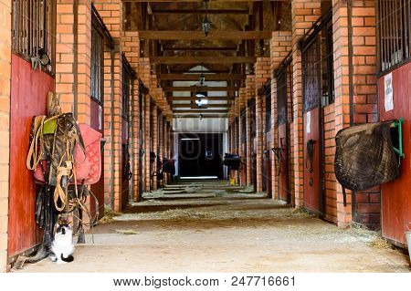 Empty Horse Stable, Farm Stable Without Horses