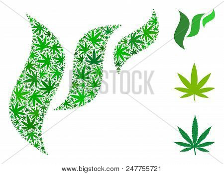 Flora Abstraction Collage Of Cannabis Leaves In Various Sizes And Green Variations. Vector Flat Mari