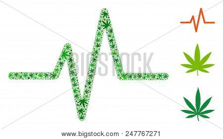 Pulse Collage Of Hemp Leaves In Variable Sizes And Green Tones. Vector Flat Ganja Leaves Are Combine