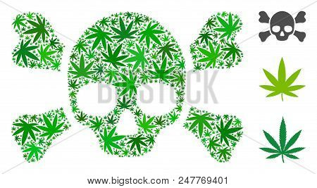 Skull crossbones mosaic of hemp leaves in different sizes and green shades. Vector flat hemp items are combined into skull crossbones figure. Herbal vector design concept. poster