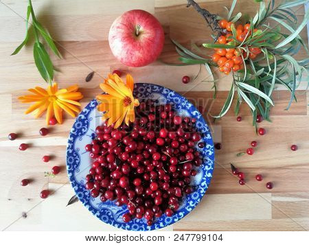 Ripe Fresh Cowberry Lingonberry, Partridgeberry, Foxberry In Bowl On Table From Above.