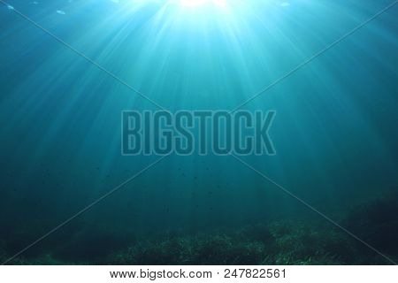 Sunbeams penetrate deep blue sea