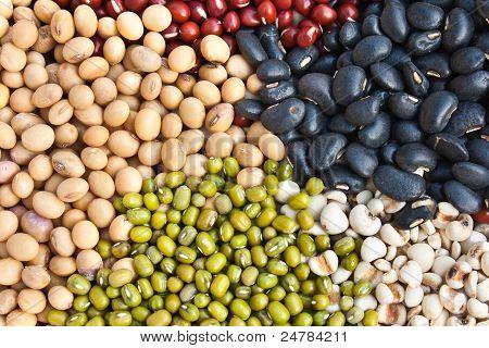 Verschiedene bunte getrocknete Hülsenfrüchte Bohnen als Hintergrund
