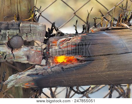 Burning Fence Post At Bush Fire In An Suburban Area Of Knox City In Melbourne East.
