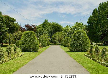 Beautiful Flower Garden In Boston, Massachusetts At The Boston Public Garden.