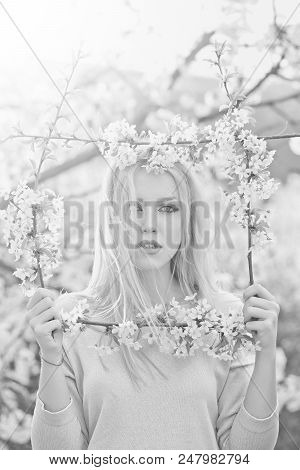 Clean Skin. Girl Or Pretty Woman With Stylish Makeup, Long, Blond Hair Holding Frame Of White, Bloss