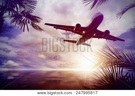 plane flying over a calm ocean with a wonderful sunset scene with palm and palm leaves in a tropical region