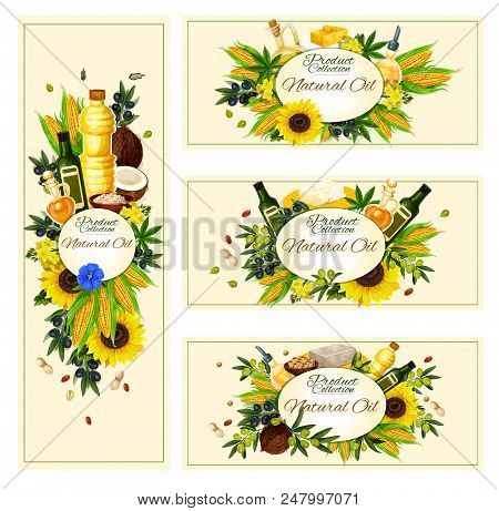 Natural Vegetable Oil Banners For Healthy Food And Cooking. Vector Design Of Oil Bottles Of Extra Vi