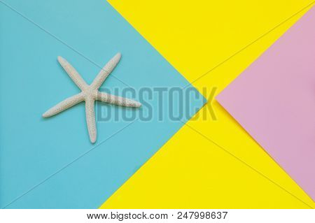 Starfish On Blue And Light Yellow Paper In Top View.creative Concept. Sunny Summer Still Life. Brigh