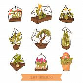 Doodle terrariums with plants for succulents and cactus. Glass garden design. poster
