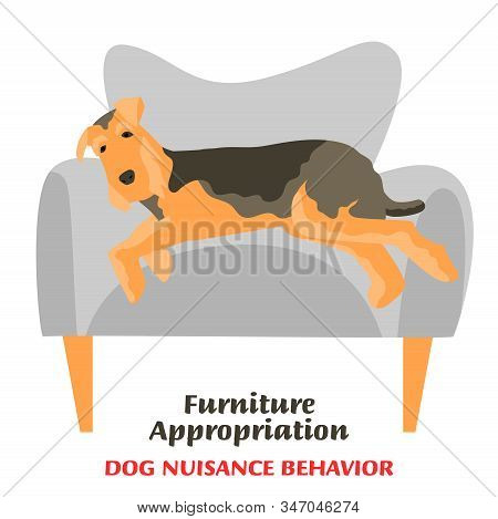Dog Behavior Problem Icon. Domestic Animal Or Pet Language. Sleeping Terrier. Furniture Appropriatio