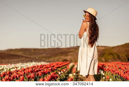 Back View Of Delighted Woman In Trendy Summer Outfit Smiling And Enjoying Sunny Day While Standing I