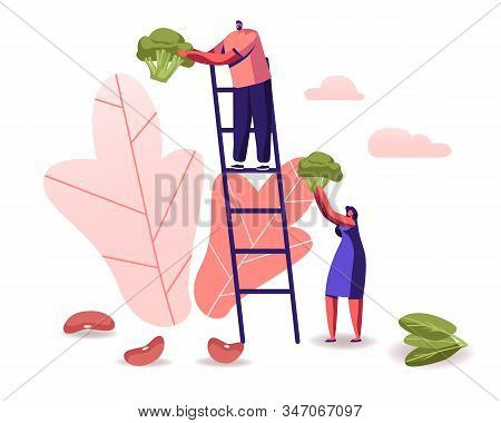 Man Stand On Ladder, Woman Holding Huge Broccoli Piece, Beans And Spinach Scattered Around. Healthy