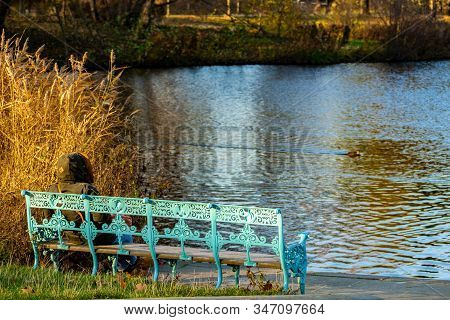 A Woman Sitting On A Turquoise Metal Bench At Charlottenburg Park Lake In Berlin In Autumn