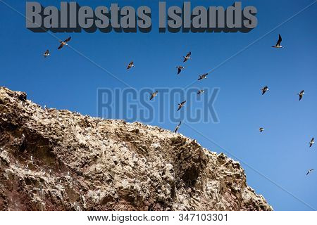 Many Gulls In The Sky Above The Rock. Inscription Ballestas Island, Paracas National Park, Peru. .