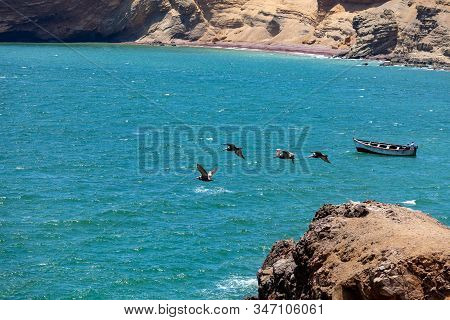 A Group Of Pelicans Flying Over The Bay At Paracas National Reserve, Peru. Rocks, Boat