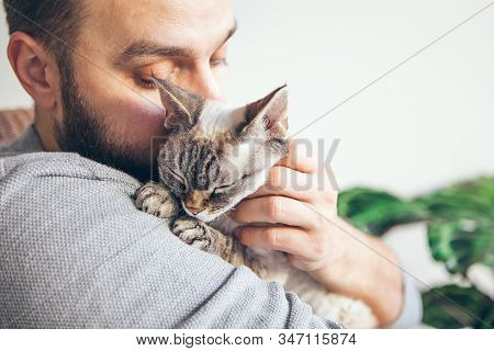 Man Is Kissing And Cuddling His Sweet And Cute Looking Devon Rex Cat. Kitten Feels Happy To Be With