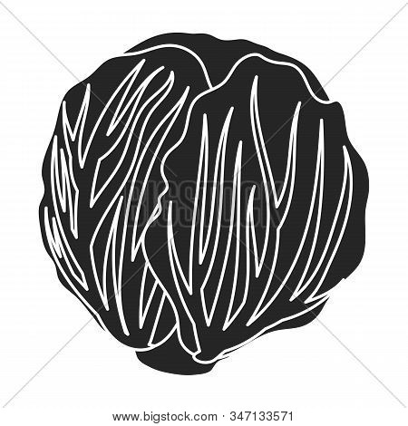 Cabbage Vector Icon.black, Simple Vector Icon Isolated On White Background Cabbage.