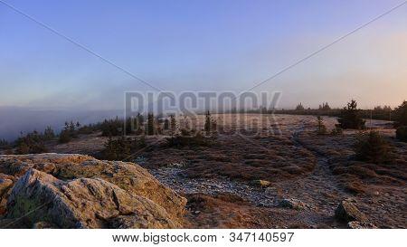 Mountain Meadow In Morning Fog Just After Sunrise, Pecny (1330 M), Jeseniky, Czech Republic. Novembe