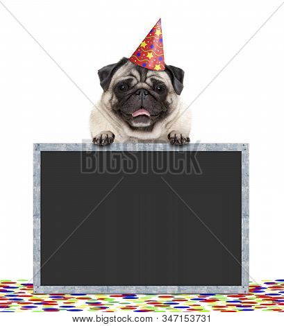 Frolic Smiling Birthday Party Pug Dog With Hat And Confetti And Paws On Blackboard Sign, Isolated On