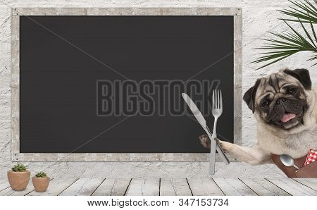 Frolic Pug Puppy Dog With Leather Apron And Cutlery In Diner, With Blank Menu Board And Wooden Count