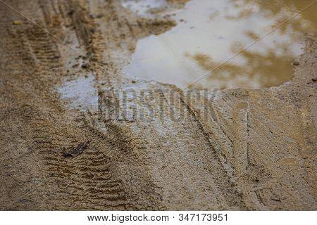 Puddle In The Mud 5