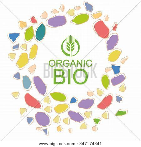 Organic Bio Packaging Design. Logo And Colored Granule Slices Around. Vector Hand Drawing