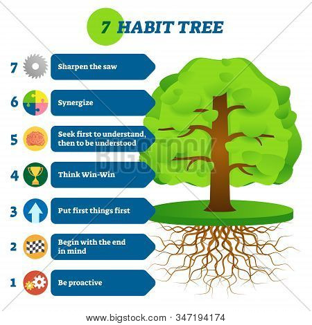 7 Habit Tree Success Mindset Stages Vector Illustration. Be Proactive, Begin With The End In Mind, P