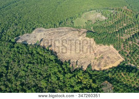 Aerial photo of deforestation of rain forest in Asia