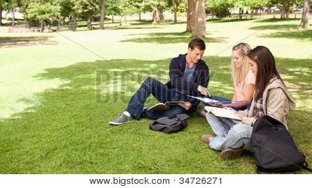 Student helping two female teenagers to revise in a park