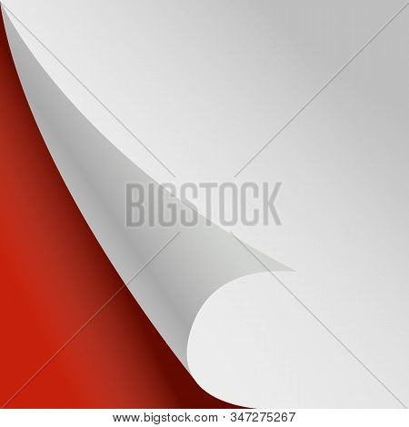 Curled Page. White Paper Corner Red Background. Vector Paper Sheet Sticker Illustration. Corner Page